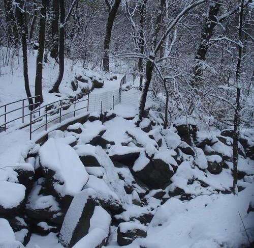 The Ramble in Winter