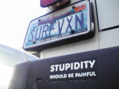 Stupidity Should Be Painful