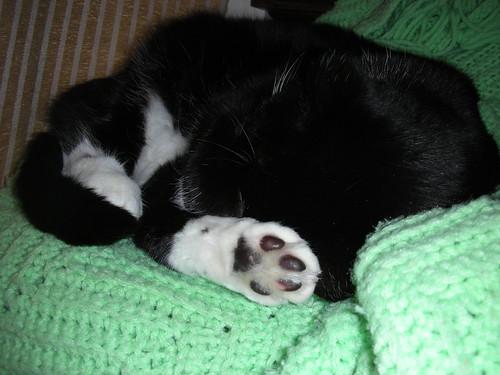Snuggle and feetsies