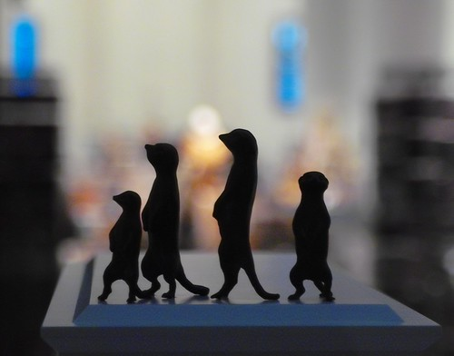 Meerkats at the Fourth Plinth by Swamibu http://bighugelabs.com/onblack.php?id=2300966128