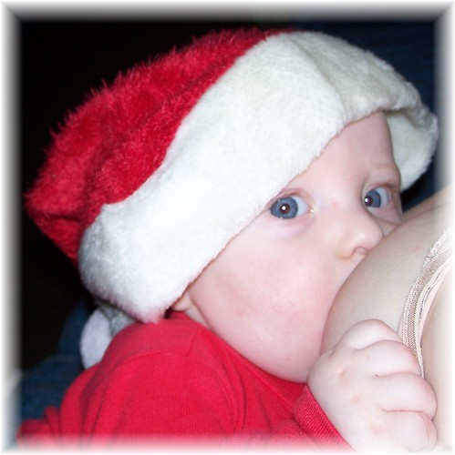 Santa Nursling from EnchantedDandelions