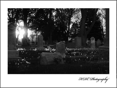 cemetery-bw