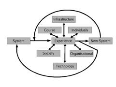 Evolutionary model of OASM development
