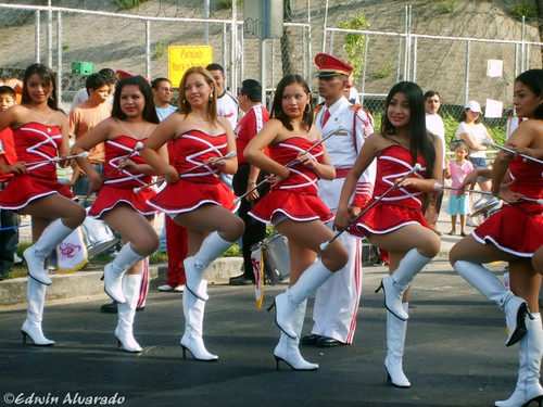 Bellas Cachiporras