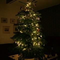 Weihnacht08 6_2008 12 20_7249