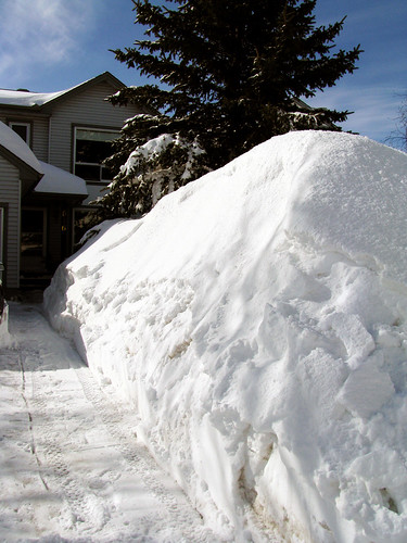 Snow Bank out Front