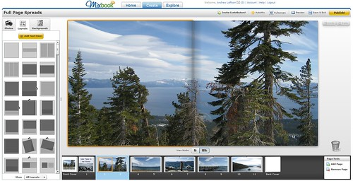 Trees over Tahoe on Mixbook