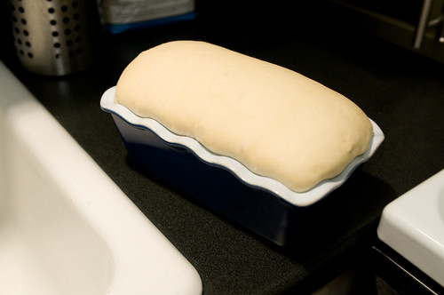 Homebaked Sandwich Bread Dough