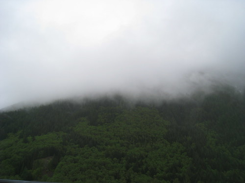 foggy mountain top in oregon