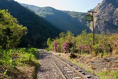 Von der Hydroelectrica nach Aguas Calientes den Schienen entlang.