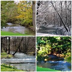 Buck Creek - 4 seasons