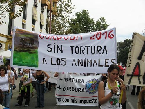 Cordoba 2016 sin tortura de toros.