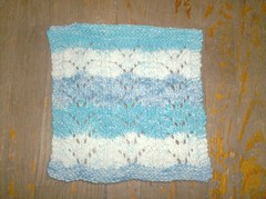 Baby Fern Dishcloth