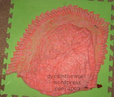 anniversary shawl 17-10-08 1