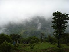 Kodachadri 37