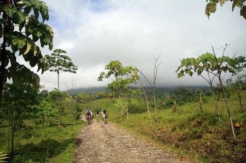 Costa Rica - Día 5 (362)
