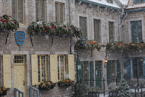 Snowy morning at Place Royale-3