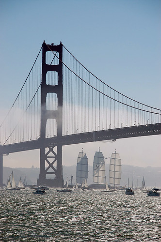 Maltese Falcon in San Francisco California