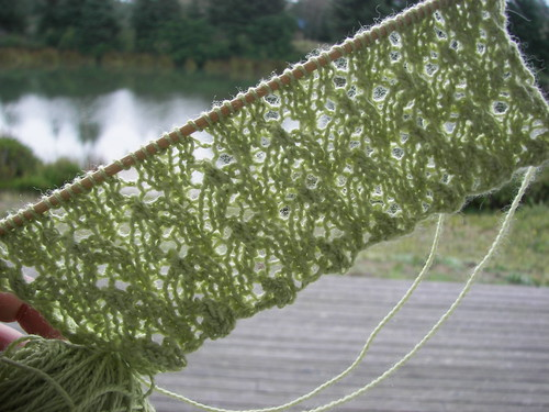 3 repeats of Fiddlehead on a not so sunny Sunday morning.