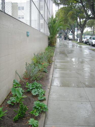 Mission High Gardens