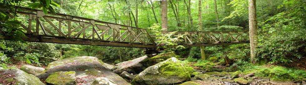 footbridgeOverRockyWater
