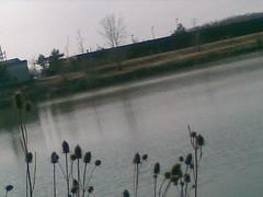South Lake, UB