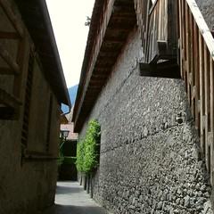 Stadtmauern