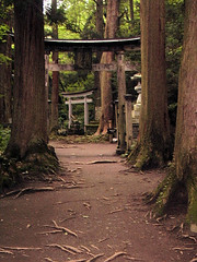 Shrine at Lake Towada with Torii Gates