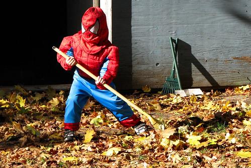 Spider-man raking leaves