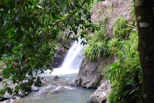 La Mina waterfall, El Yunque