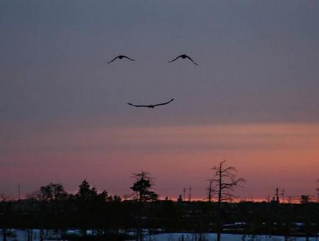 Smiling Sunset