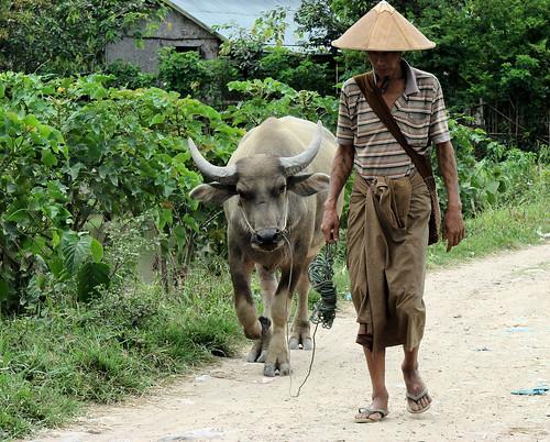 Paseo por las aldeas shan
