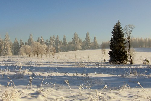 winter in Pieniny