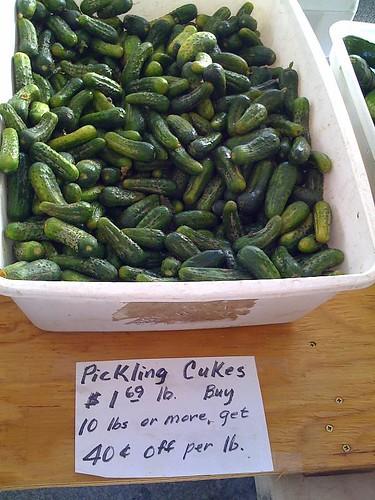 Pickles anyone?