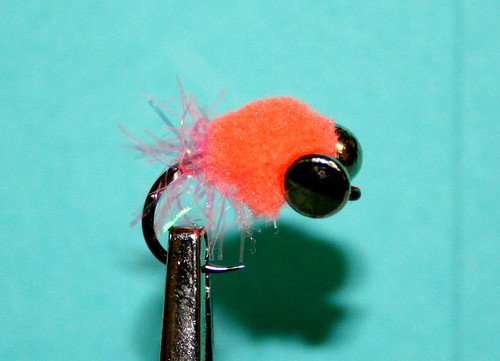 weighted egg pattern the caddis fly oregon fishing blog