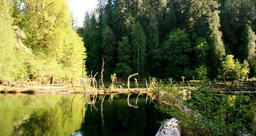 Esmond Lake