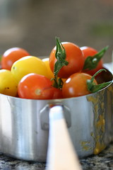 measuring cherry tomatoes