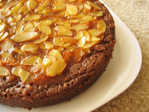 chocolate cake with abricotage