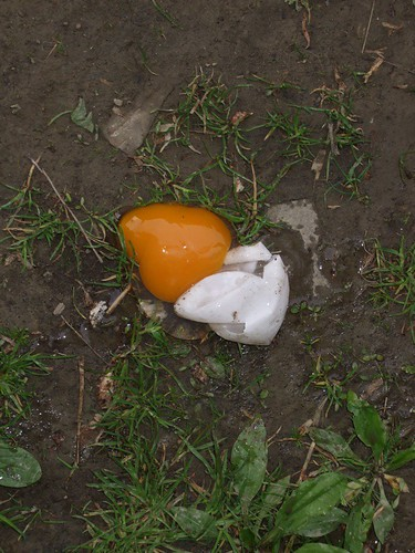 Duck Egg Splat
