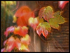 Herbstlied