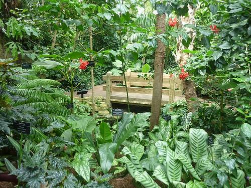 WI, Madison - Botanical Gardens 2