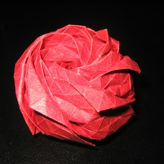 Hexagonale Rose
