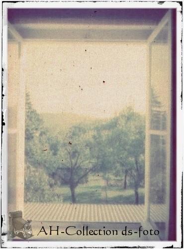 ds-foto [003]