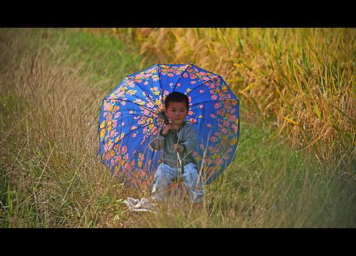 Little Boy Blue - China Edition