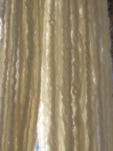 Close up of Navajo ply