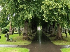 View of newark cemetery UK 100_1119 by laurencegoff