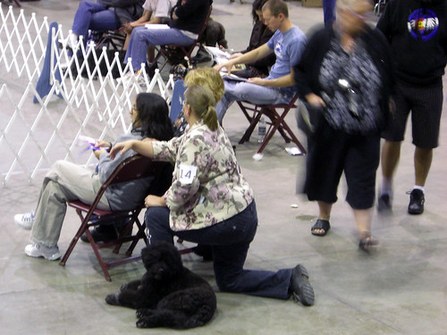 Dog Show - Pueblo