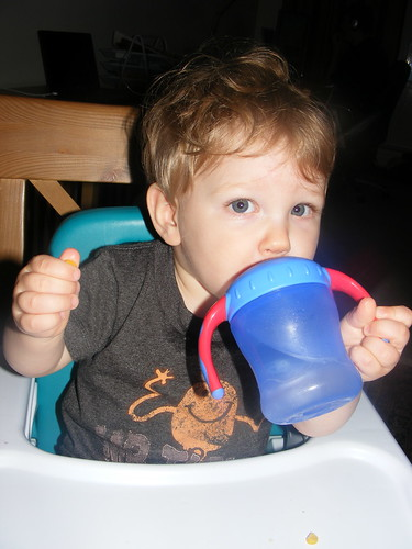 Starting to understand the sippy cup