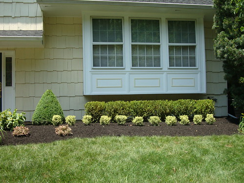 This Old House:  Landscaping Face Lift 2011