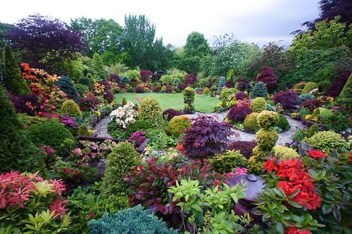 Spring garden. Colours of the rainbow by Four Seasons Garden